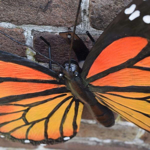 Muurdecoratie Vlinder Orange