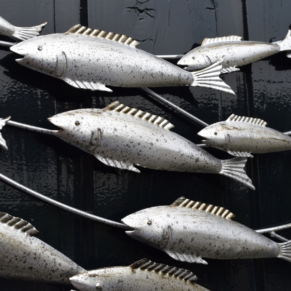 Muurdecoratie Sardines