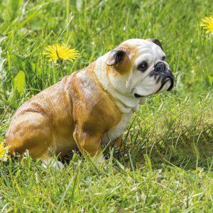 Tuindecoratie Bulldog