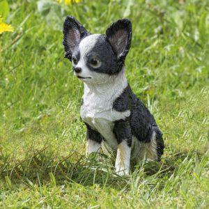 Tuindecoratie Chihuahua