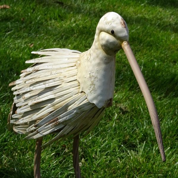 Metalen weidevogel Wulp-3374
